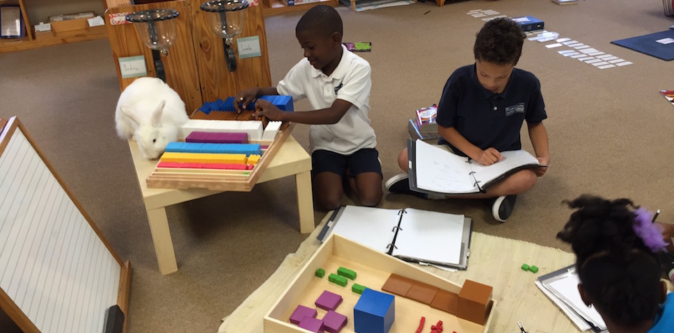 Elementary students cubing