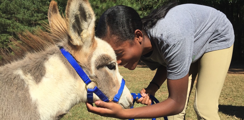 Adolescent student with school donkey